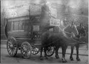Horse Drawn Buses
